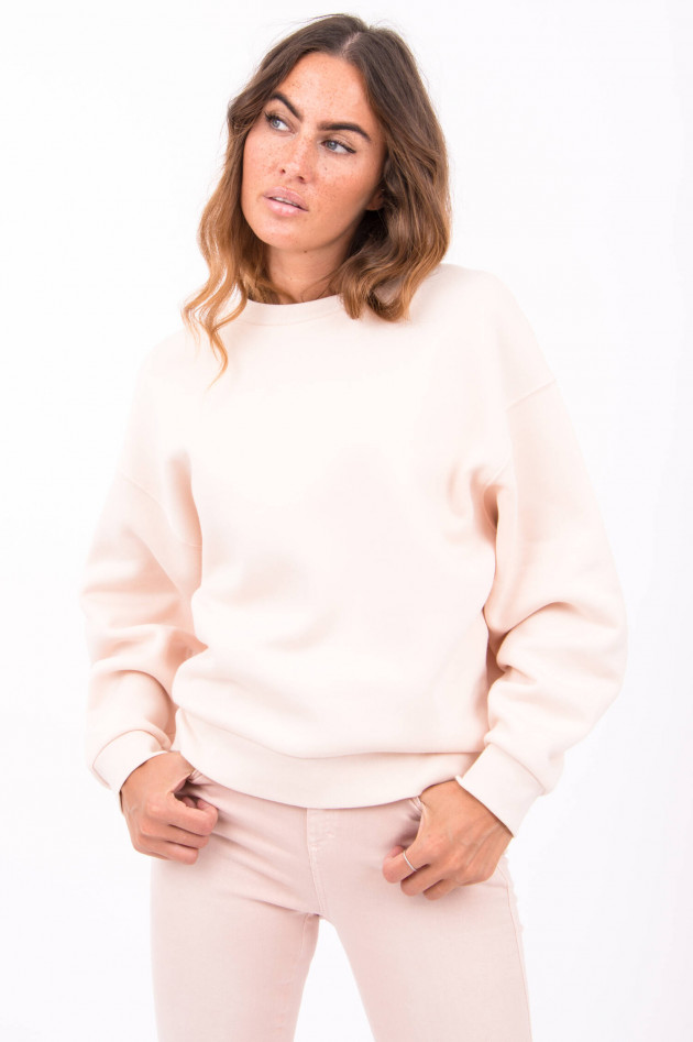 Closed Basic Sweater in Lavenderblush