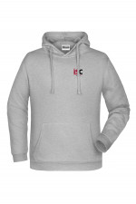 Men Hoodie in Light Grey