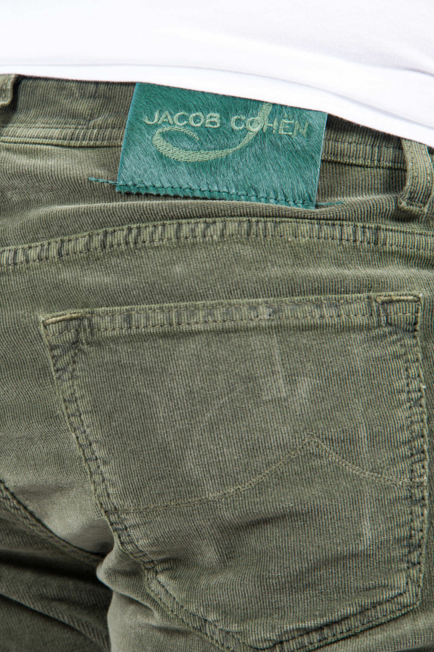 Jacob Cohën Cordhose in Oliv